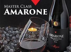 Master Class Amarone