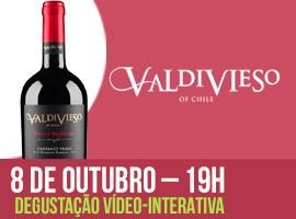 DEGUSTAÇÃO VALDIVIESO - VINHO 1