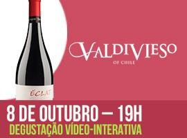 DEGUSTAÇÃO VALDIVIESO - VINHO 2