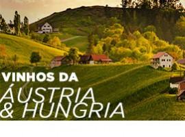 AULA DE VINHOS DA ÁUSTRIA E HUNGRIA