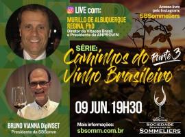 """Live com Murillo de Albuquerque Regina, PhD - Série """"Caminhos do Vinho Brasileiro"""" - Parte 3"""