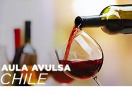 [ONLINE] AULA VINHOS DO CHILE
